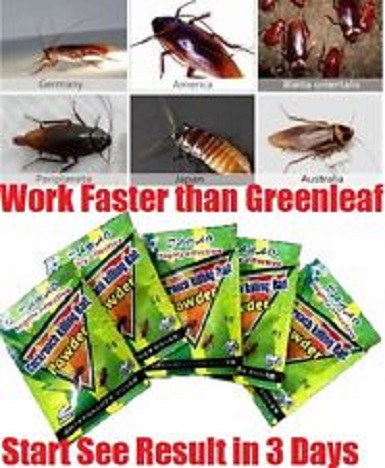 natural ways to get rid of roaches